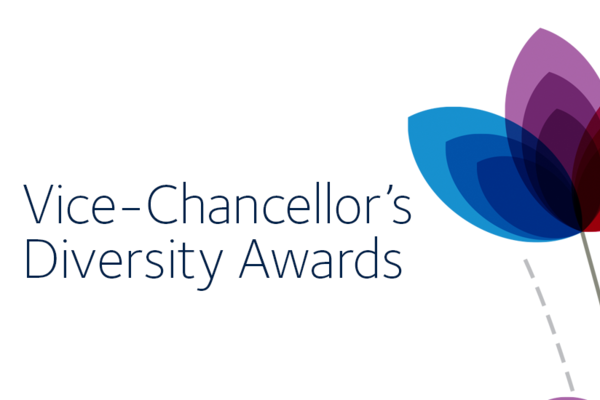 vc diversity awards banner