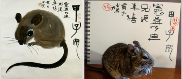 Huang Yongyu's ink and colour rat side-by-side with a degu and a notebook with Huang Yongyu's text